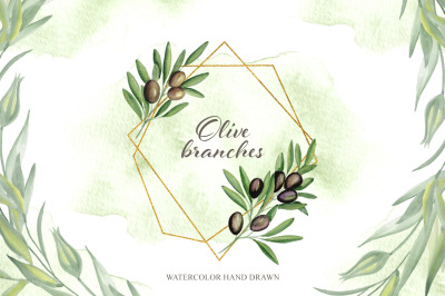 Olive branches. Watercolor