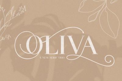 Oliva Serif Font Trio (Serif Font, Swirly Font, Swashes Font)