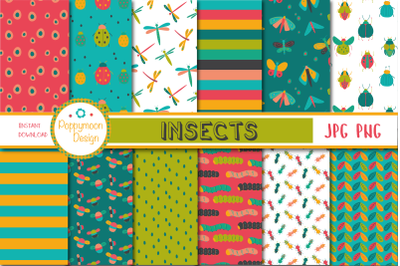Insect paper