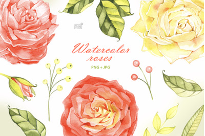 Watercolor roses cliparts
