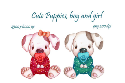 Cute Puppies, boy and girl.