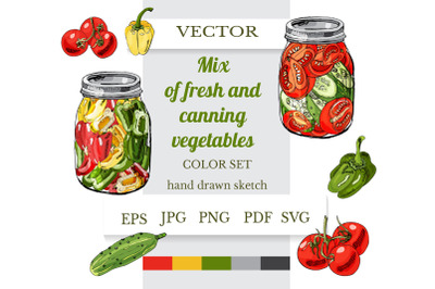 Hand drawn sketch of mix of fresh and canning vegetables.