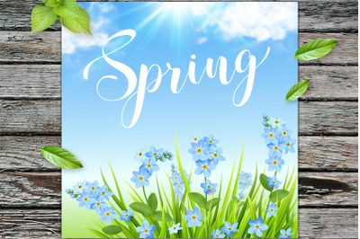 Spring Background with Blue Flowers