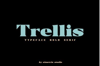 Trellis//Typeface Bold Serif (DISCOUNT 50%)