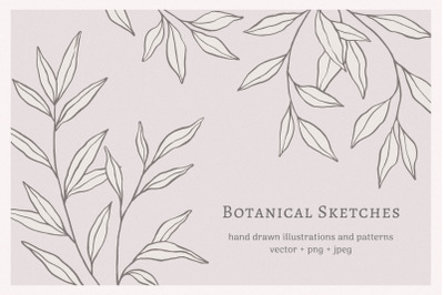 Botanical Sketches Collection
