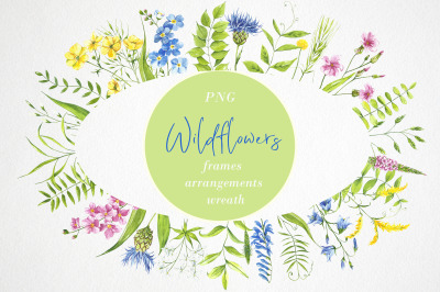 Watercolor flower clipart. Wildflowers, plants. flower frame