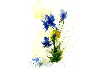 Watercolor abstract flowers drawing on white backgrounds