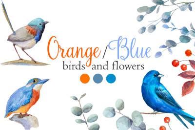 Watercolor orange,blue birds flowers