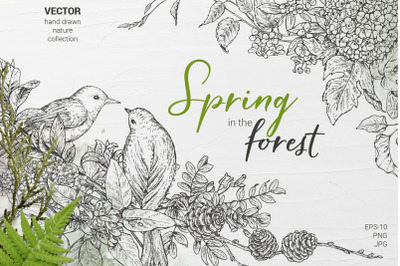 Spring in the forest vector set