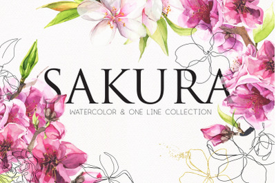 Watercolor & Line art SAKURA flowers. Clip art illustrations