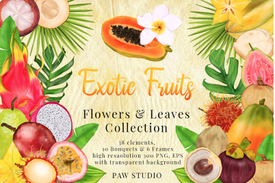 Tropical Graphic Fruits, Flowers, Leaves. Exotic Frames Bouquets