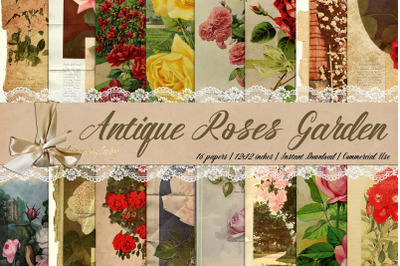 16 Antique Rose Garden Victorian Europe Digital Paper 8.5x11