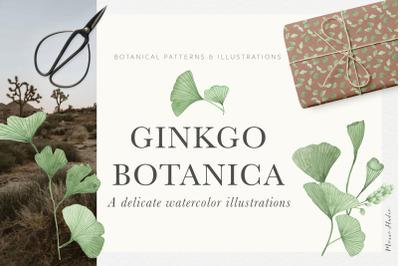 Ginkgo Botanica - Florals & Leaves