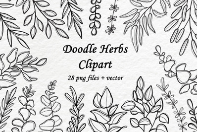 Doodle Herbs Clipart