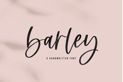 Barley - Handwritten Script Font