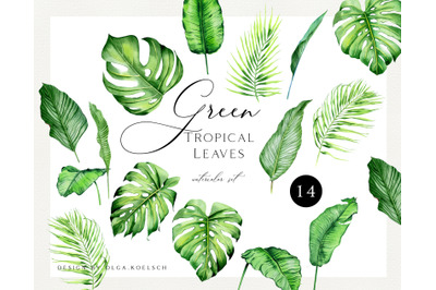 Watercolor tropical clipart. Greenery clipart watercolor leaf.  Modern