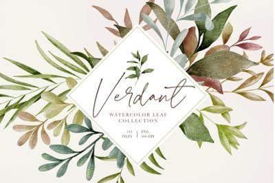 VERDANT WATERCOLOR LEAVES & GREENERY Graphics