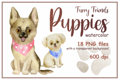 Furry friends. Puppies. Watercolor clip arts