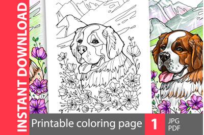 Saint Bernard coloring page