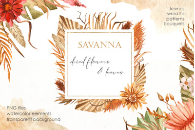Savanna dried flowers and leaves Watercolor