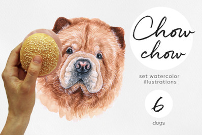 Chow-chow. Watercolor set dog illustrations. 6 dogs