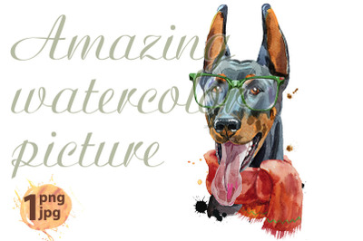 Watercolor portrait doberman with glasses and red scarf