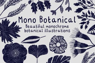 Mono Botanical
