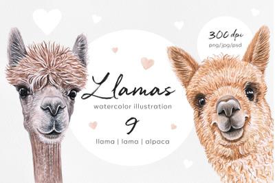 Llama. Watercolor set lama illustrations. 9 alpaca