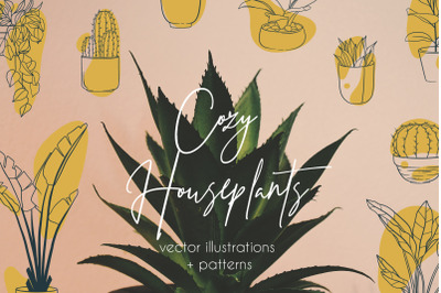 Cozy Houseplants | illustrations