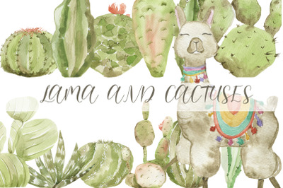 LAMA and CACTUSES