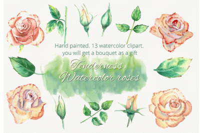 Peach roses. Watercolor clipart
