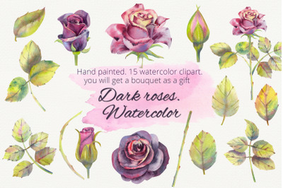 Dark roses. Watercolor clipart