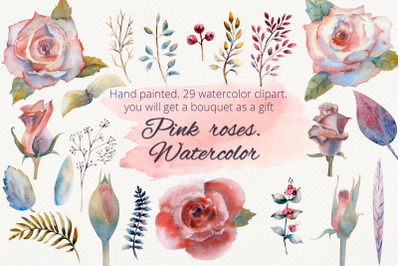 Pink roses. Watercolor clipart