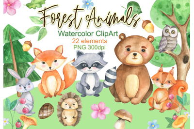 Forest animals clipart Woodland clip art watercolor PNG