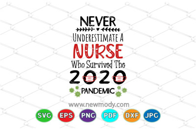 Never Underestimate A NurseWho Survived 2020 Pandemic