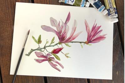 Watercolor Magnolia Clip Art, Wreath and Pattern