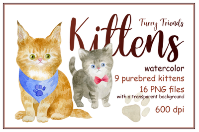 Furry friends. Kittens. Watercolor clip arts