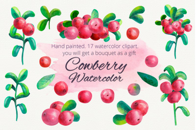 Cowberry. Watercolor clipart