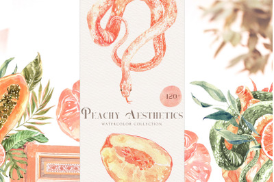 Peach Aesthetics Tropical Watercolor