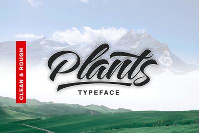 Plants Clean & Rough Style