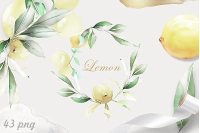 Lemon Watercolor ClipArt