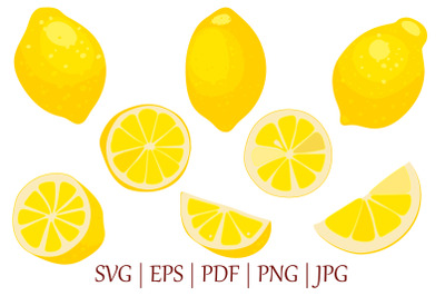 bright Lemon fruit vector illustrations