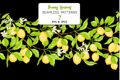 Lemon tree branch with lemons, flowers and leaves.