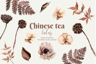 Watercolor chinese flowers  - Watercolor beautiful Lotus - Chinese tea