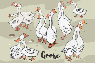 Cute Goose Collections Set