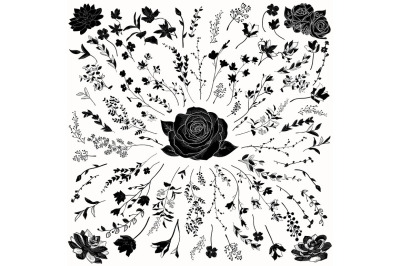 Vector Florals Black Shapes. Hand Drawn Herbs, Plants, Flowers.
