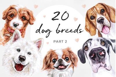 PART 2. Watercolor illustrations set DOG breeds.
