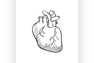 heart doodle drawing