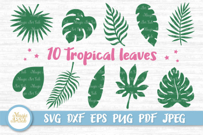 Tropical leaves svg, Tropical party decor svg, Jungle leaves svg