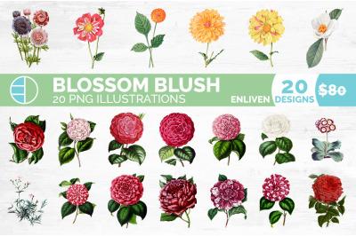 Flowers Bundle (20 Flowers)